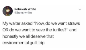 Tweet describing a waiter guilting customers into not using straws.
